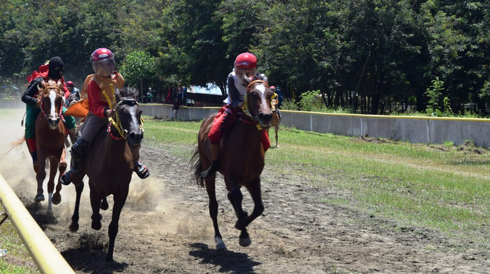Lomba Pacuan Kuda di Sport Centre dalam rangka memeriahkan jelang HUT Polman 2016. (Foto: Burhanuddin HR)